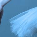«Лифарь. Килиан. Форсайт» Одноактные балеты