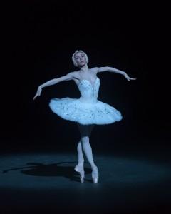 Иконы русского балета. Умирающий лебедь