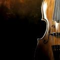 В Новосибирской филармонии пройдет концерт Filarmonica-квартета и Андрея Усова