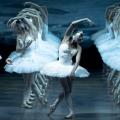 Балет П. Чайковского «Лебединое озеро»