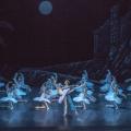 Фестиваль Аллы Шелест в балетном пространстве России