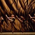 Вечер Национального балета Канады